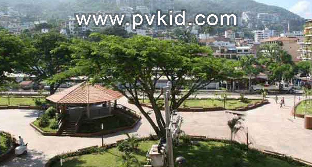 Plaza-Mar-406 8-16-2021 6