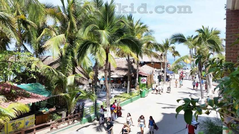Plaza Mar Condo 203 a24