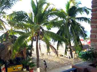 Puerto Vallarta Rentals 506view-2