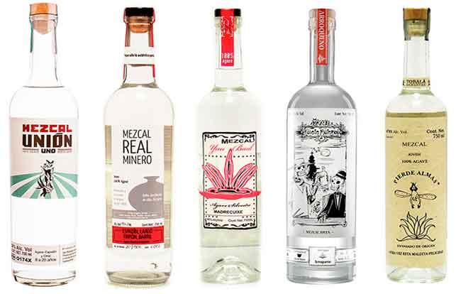 Tequila vs. Mezcal 2