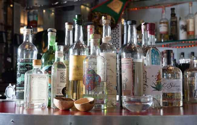 Tequila vs. Mezcal 3