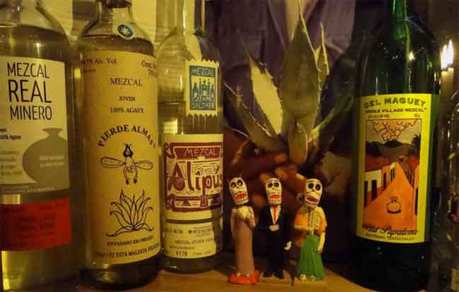 Tequila vs. Mezcal 5